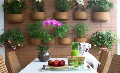 jardim-vertical-para-orquideas-6